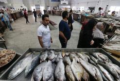 تصاویر / بازار ماهی فروشان کیش آماده برای سبزی پلو با ماهی روز اول بهار