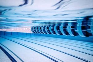 برگزاری دوره های داوری و بازآموزی شنا