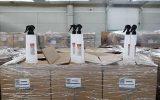 توزیع محلول ضد عفونی کننده توسط سازمان منطقه آزاد کیش + تصاویر