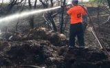 خطای انسانی علت در آتش سوختن ۱۰ اصله درخت